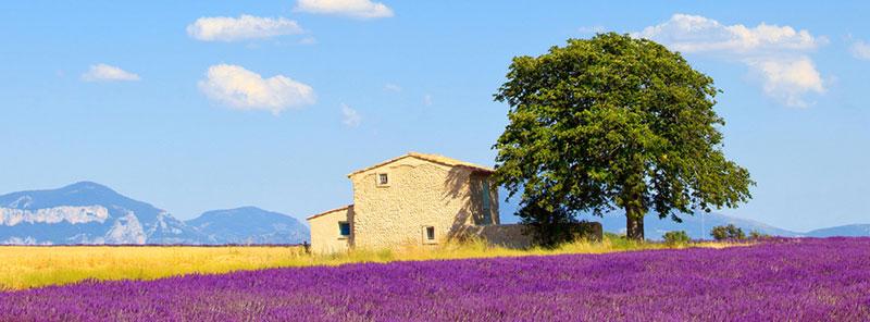 Contact Provence Gourmet